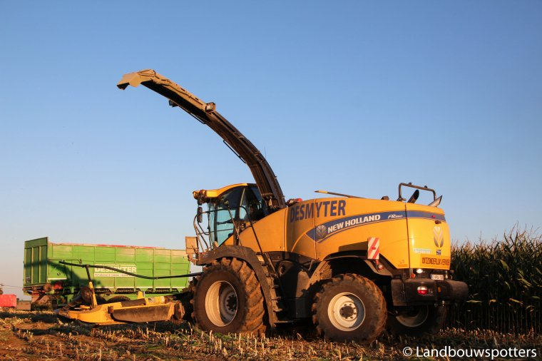 Mais hakselen 206 met New Holland FR850