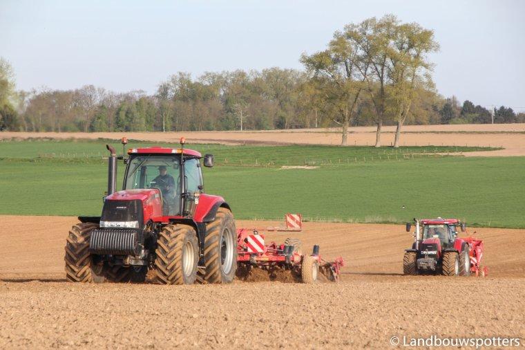 Plantation pommes de terre avec Case Magnum 280 & Puma 230