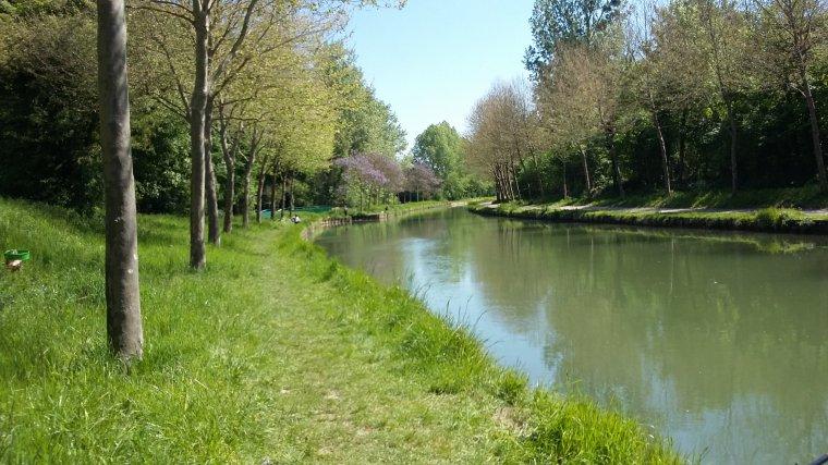 Canal de l'Ourcq à Gressy (77)  le 10 mai 2017