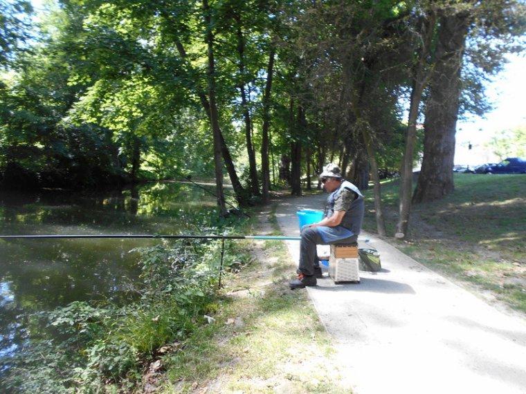 Pêche dans l'Yerres à Yerres (77) 12 juin 2017