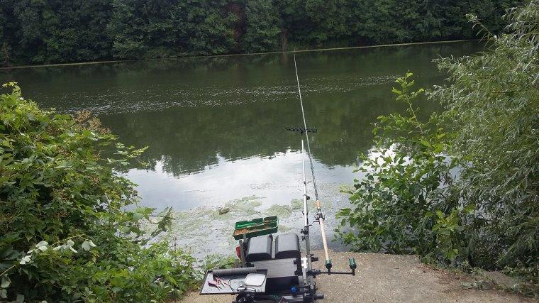 Andresy : pêche dans le bras de Seine au feeder le 27 06 2017