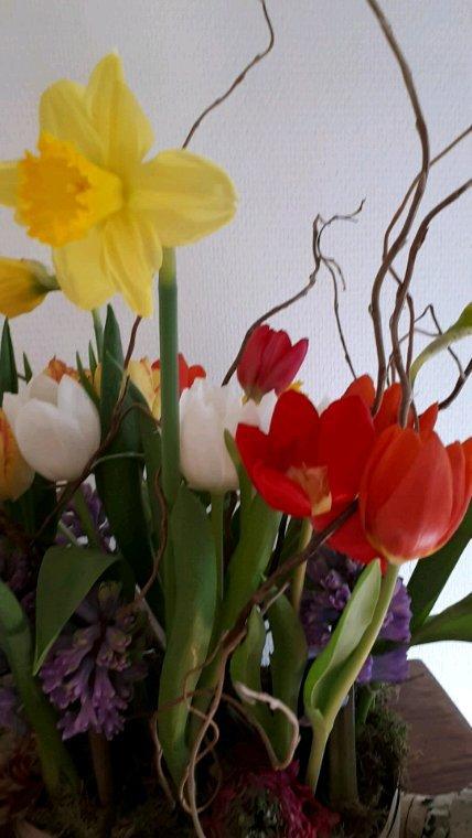 """Cours chez Olivier Seghin """"Ça sent le printemps """""""
