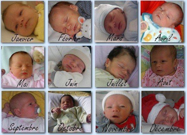 Les 1ers bébés ...