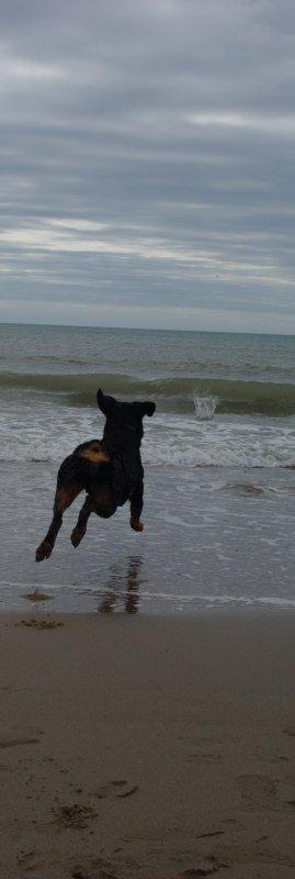 ~ Flying ~