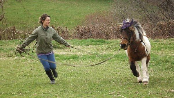 """On a tendance, de nos jours, à oublier que l'équitation est un art. Or, l'art n'existe pas sans amour. Mais celui qui n'a pas la discipline nécessaire et qui ne possède pas la technique ne peut prétendre à l'art. L'art, c'est la sublimation de la technique par l'amour. L'amour, afin qu'après la mort du cheval, vous ayez gardé en votre c½ur le souvenir de cette entente, de ces sensations qui ont quand même élevé votre esprit au-dessus des misères d'une vie humaine."""""""
