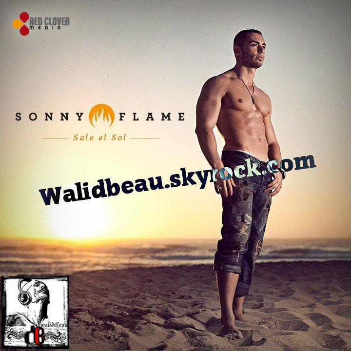 Sonny Flame  / Sale el Sol (2012)