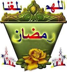salamalikoum