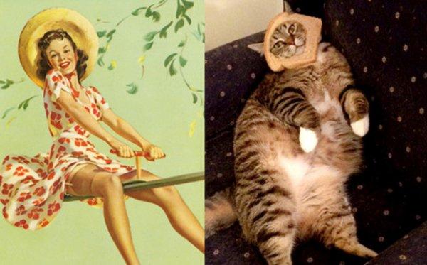 Il faut rétablir la vérité, nos chats s'inspirent en réalité des Pin-up