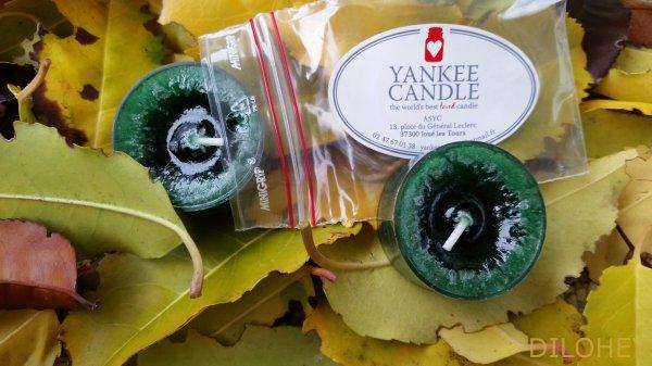 J'OUVRE LA YANKEE BOX DE NOVEMBRE AUX PARFUMS D'HIVER