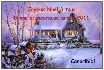 Joyeux Noël - Bonne et heureuse année 2011