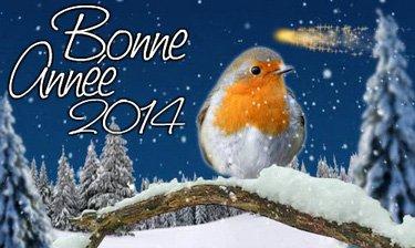 Bonne et heureuse année 2014 !!!!