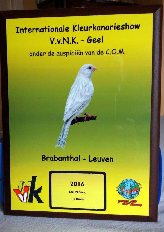Mondial Alméria 2017 - VVNK 2016 - Bilan des concours