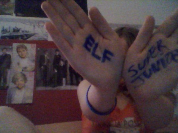 Super Junior and...ELF <3