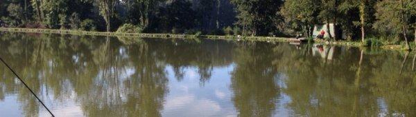 Peche étang des deux frère super journée beaucoup de fish pas grasse de 1 kl a 3