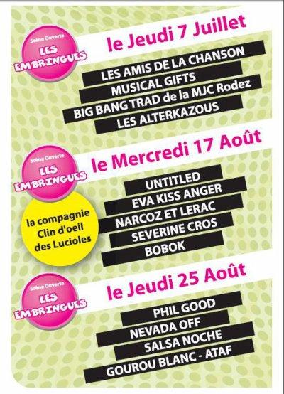 Narcoz et Lerac en concert à Rodez (12)