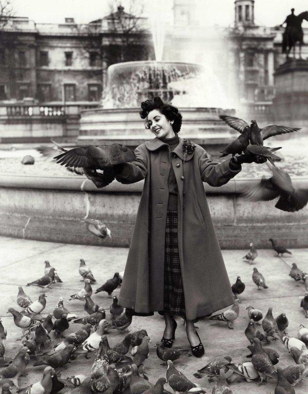 """I hate Birds."" Mark Daumail"