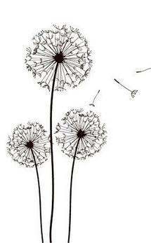 """""""Pourquoi tant de combats, de larmes, de regrets, et tant de tristes choses ;  Et pourquoi Dieu voulut que je fusse un cyprès, quand vous étiez des roses""""  Victor H."""