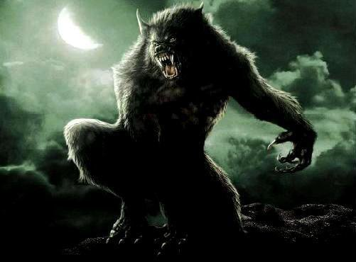 une idée du lycanthrope