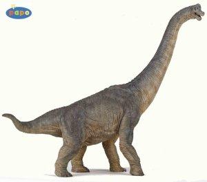 Diplodocus blog de dinosaure land - Dinosaure diplodocus ...