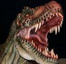 Photo de Dinosaure-Land