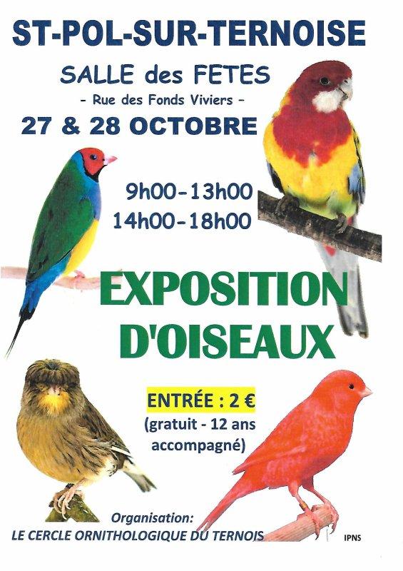 Concours de mon club ça se passe ce week end plus de 900 oiseaux Une visite a ne pas manquer avec une belle bourse