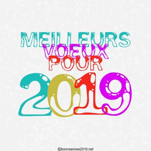 Je vous souhaite mes meilleurs voeux pour 2019