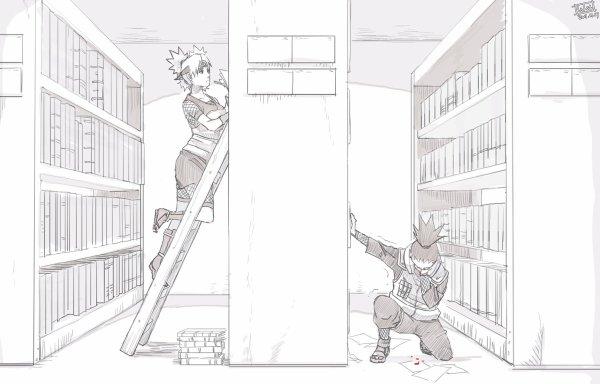 Bibliothèque de mes fanfictions favorites sur le ShikaTema