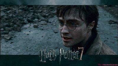 Première séance avec: Harry Potter et les reliques de la Mort (partie 1 )