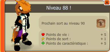 Xp , Team , Métier
