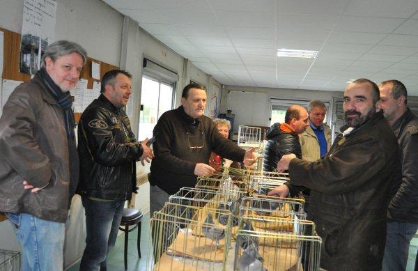 LA GAZETTE VISITE A LA BOURSE AUX PIGEONS DE FRAIS MARAIS