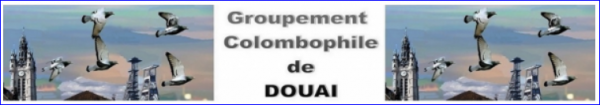 LA GAZETTE INFO CONCOURS DE NANTEUIL  GROUPEMENT COLOMBOPHILE DE DOUAI 2018