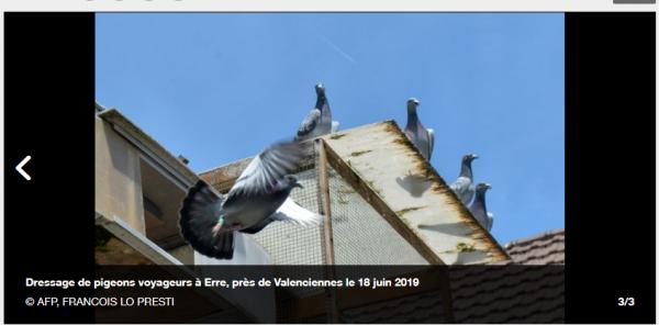 LA GAZETTE INFO VU SUR ACTUALITES ORANGE DU 25 JUIN  2019