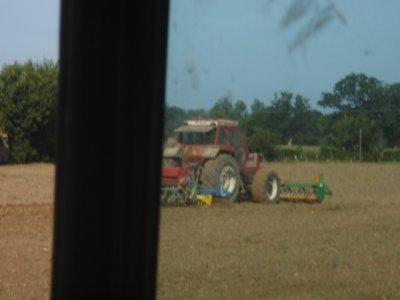 semis de colza ac le fiat