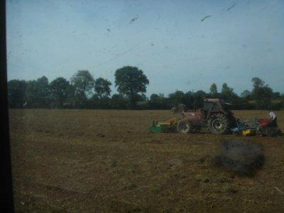 canadien ac le fiat +semis de colza ac le fiat +rouleau aprés semis de colza ac 845