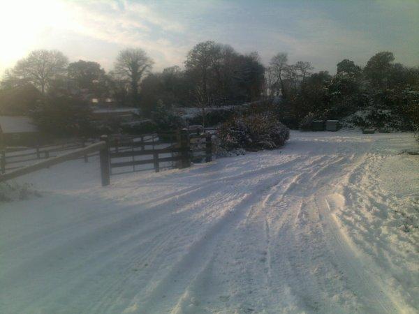 pemiere neige