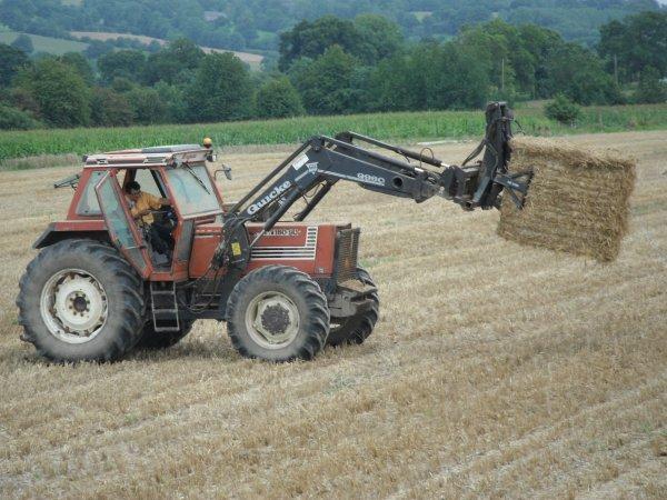 préparation des terre pour le semis