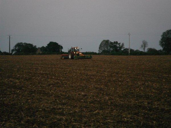 semis de bles 2011