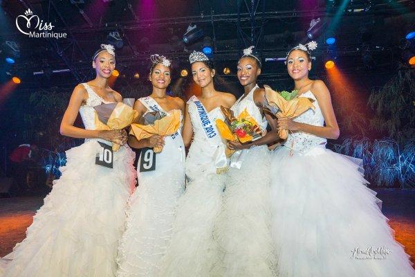 Miss Martinique 2013 est Nathalie Fredal