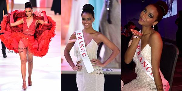 Miss Monde 2014 est Miss Afrique du Sud !
