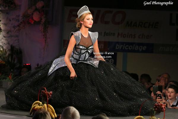 24 Avril 2015 | Les miss du show ainsi que Camille ont assisté à l'élection de Miss Haute Saône.