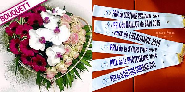Découvrez le jury de Miss France 2016 ainsi que le bouquet et les nouvelles écharpes !