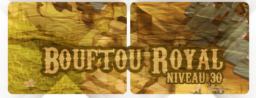 #2 - Coin XP et Bouftou Royal