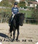 Photo de Mlle-Equitation88