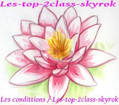 Les-top-2class-skyrok.com