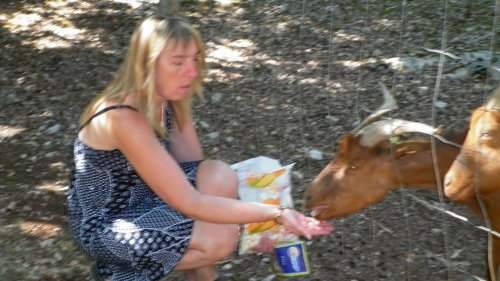 le zoo de gramat