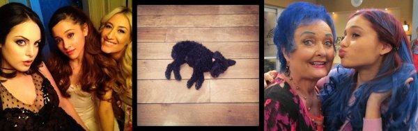 Actu : 28 (2) & 29 Septembre, Instagram, Clip : Right There, Sam & Cat