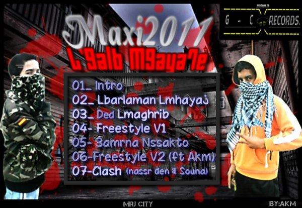 Maxi2011