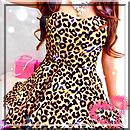 Pack léopard