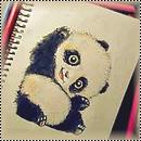 pack panda