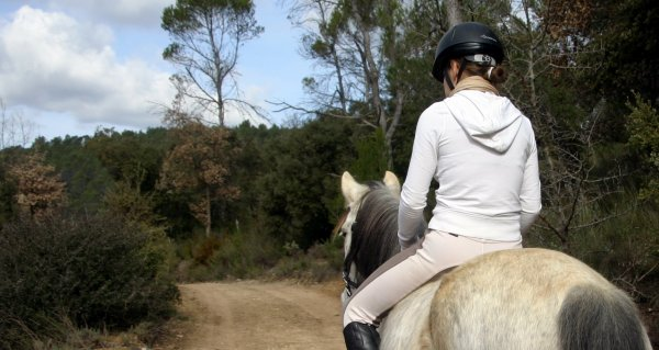 Quand on y pense, c'est fou que des cavaliers peuvent tomber amoureux d'un cheval, mais c'est tellement mignon... ♥
